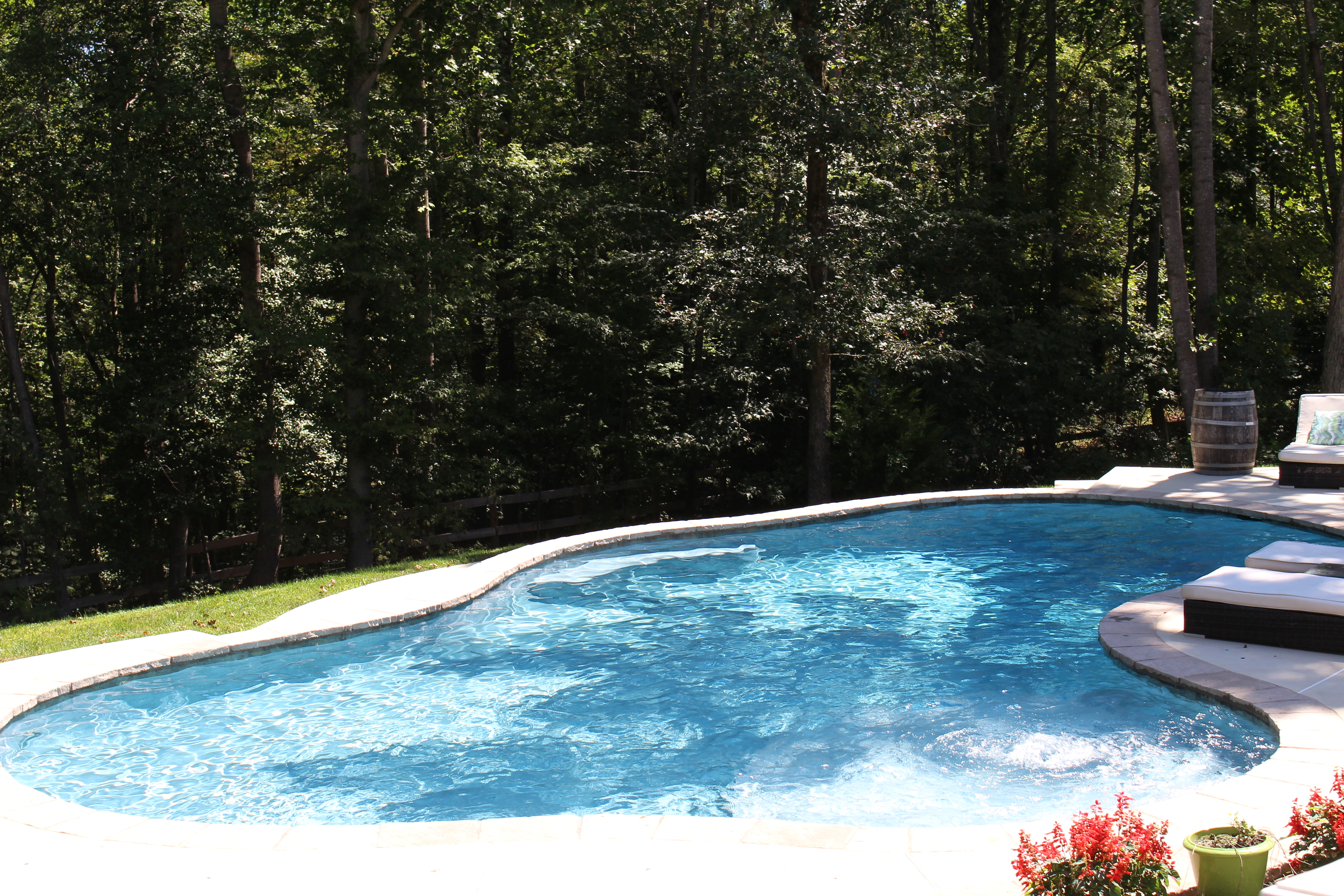 Freeform Swimming Pool Project The Pool Company Construction