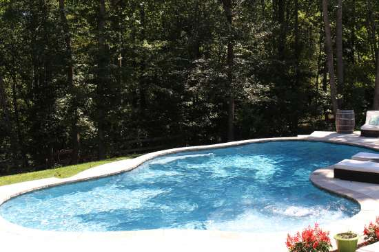 Freeform Pool project 1